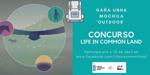 Life in common life organiza un concurso